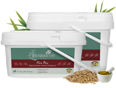 Flax Plus Impulsion with Vitality