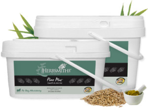Flax Plus Impulsion