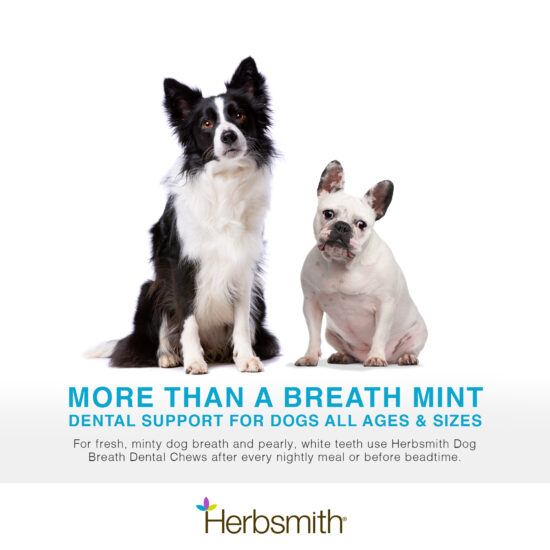 herbsmith-amazon-art-files-dog-breath-Final-dogs