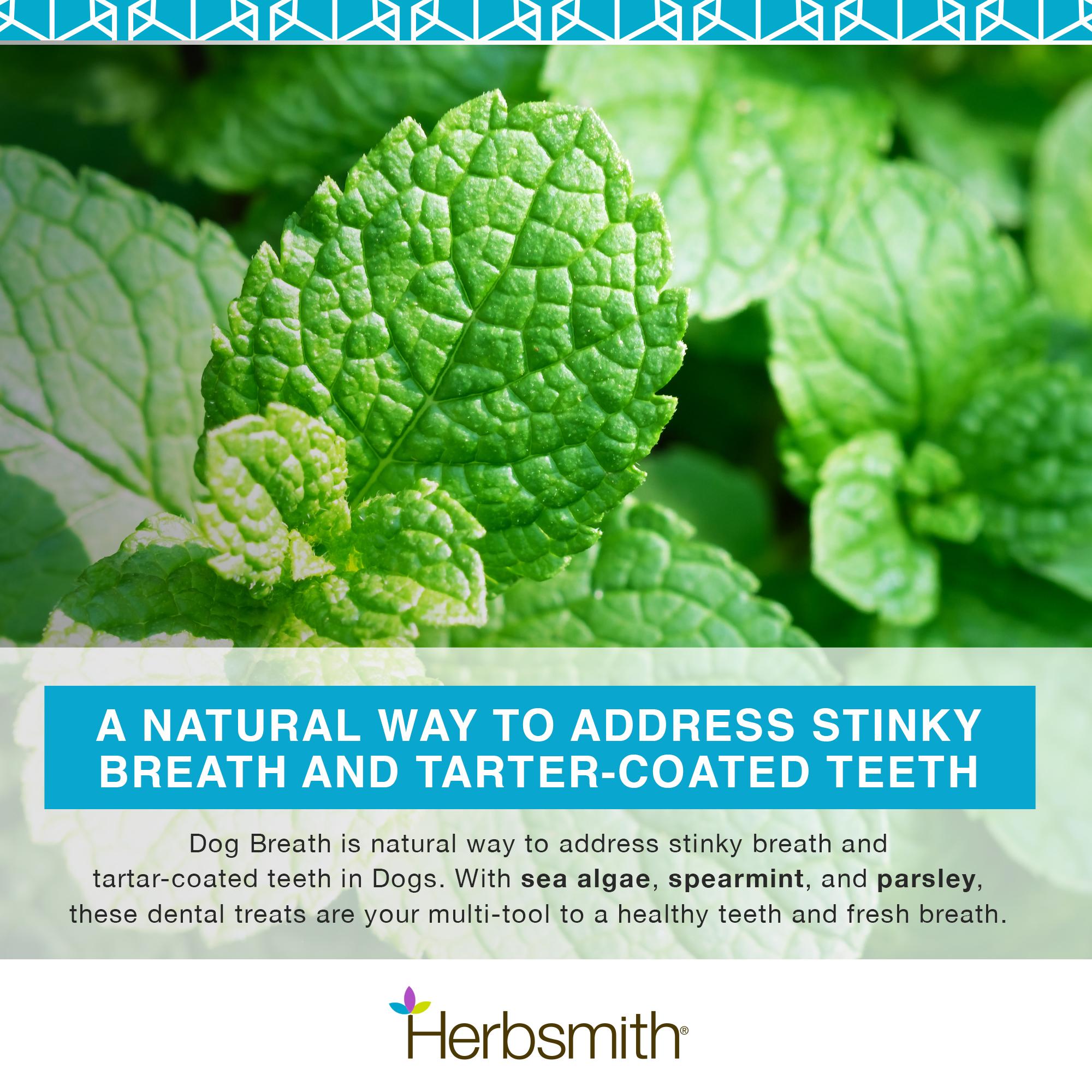 herbsmith-amazon-art-files-dog-breath-Final-ingredients