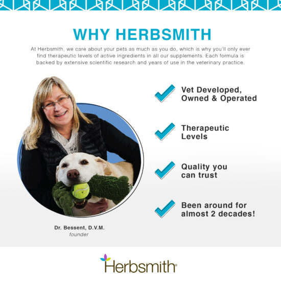 herbsmith-amazon-art-files-dog-breath-Final-vet