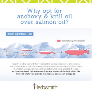 herbsmith-amazon-art-files-glimmer-final-anchovy-krill-salmon-comparison