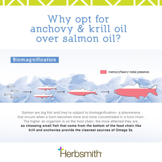 herbsmith-amazon-art-files-glimmer-final-anchovy-krill-salmon-comparison