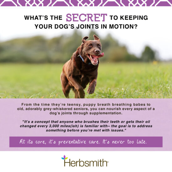 herbsmith-amazon-art-files-sound-dog-viscosity-secret-Final