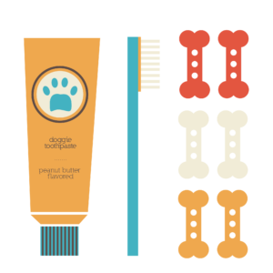 Gather your tools for brushing: Toothpaste, toothbrush, treats