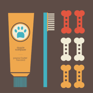 Gather your tools: doggy toothpaste, toothbrush, treats