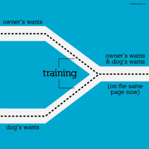 training is merging two paths into one