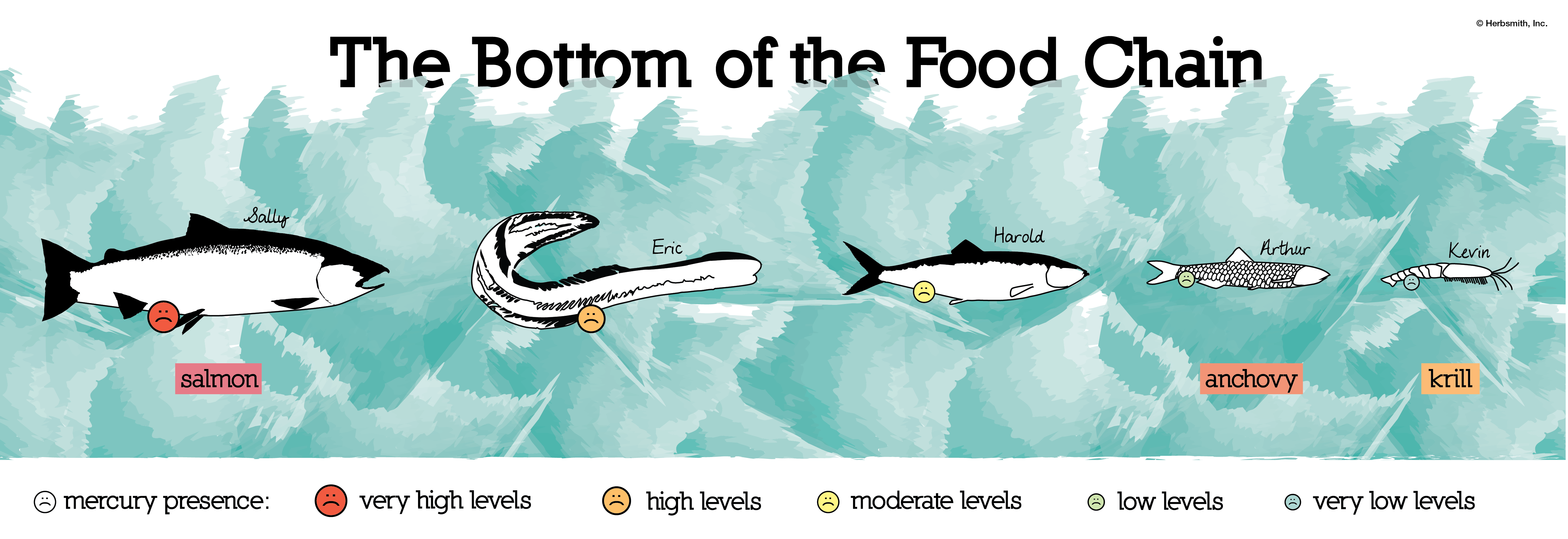 The Bottom of the Food Chain | Herbsmith