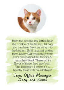 Sound Kitty testimonial from Jenn: joint health