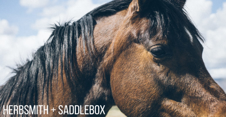 Look for Herbsmith in the June SaddleBox!