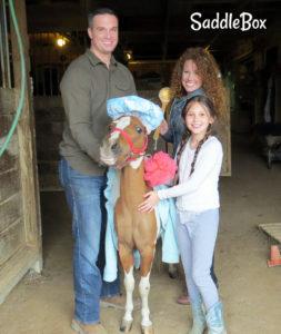 SaddleBox Family