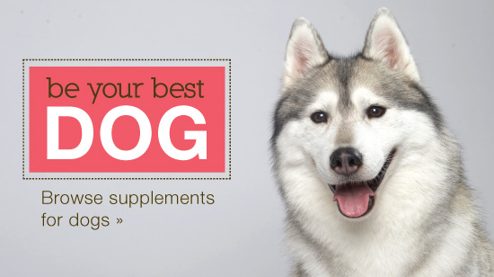 our husky call to action, for our supplements for dogs, herbs for pets and dog supplements