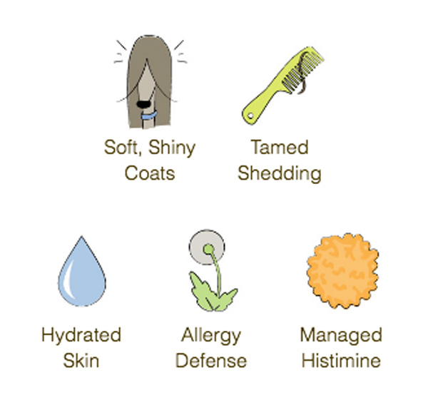 skin and coat line benefits