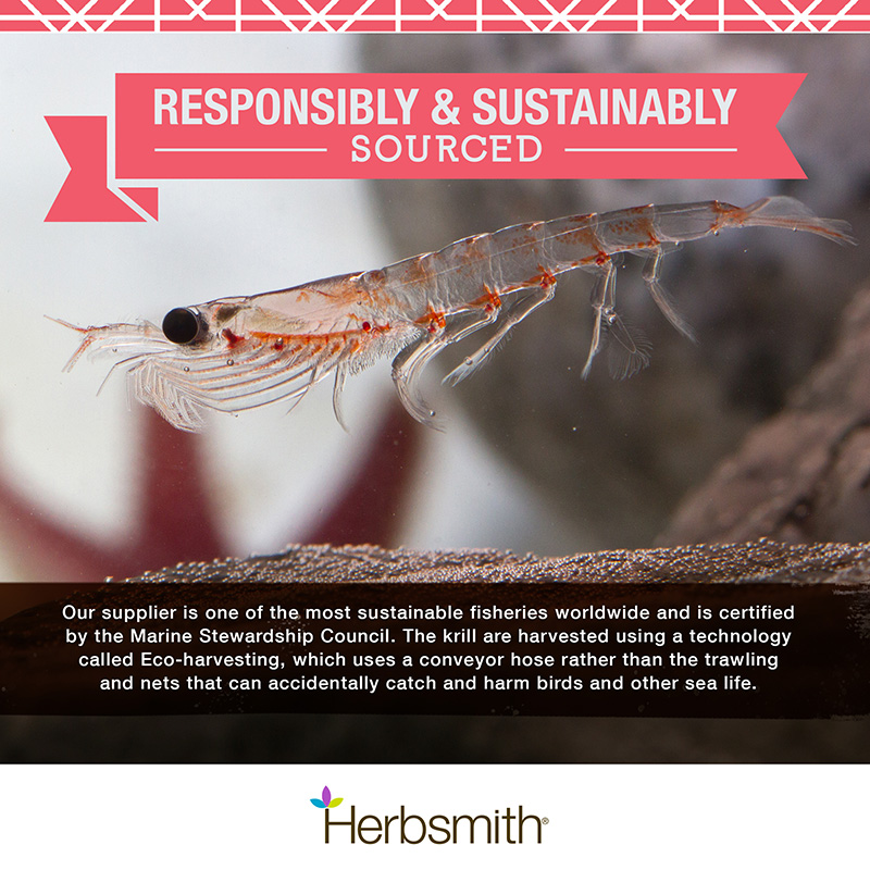 herbsmith-amazon-art-files-krill-2-responsibly-sustainably-sourced
